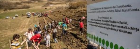 Pădurea Transilvania: 10 hectare plantate în câteva ore de voluntari