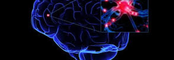Cum ne DISTRUGEM creierul zilnic şi nu ne-a spus nimeni cât de GRAV este