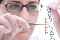"""Bărbații și femeile sunt diferiți biologic în mod profund: nou studiu contrazice teoria """"gender"""""""