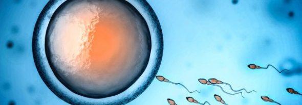"""Ministerul Sănătății din SUA recunoaște că """"viața începe la concepție"""""""