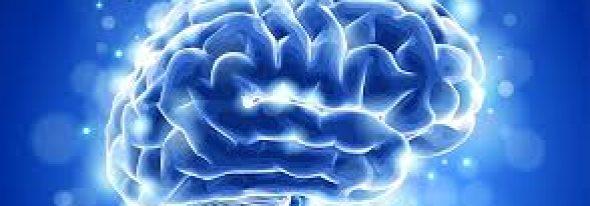 Calitatea somnului are un impact hotărâtor asupra vieții. Dar ce se întâmplă cu creierul în timpul orelor de somn?